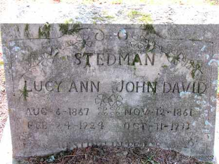 STEDMAN, JOHN DAVID - Bradley County, Arkansas | JOHN DAVID STEDMAN - Arkansas Gravestone Photos