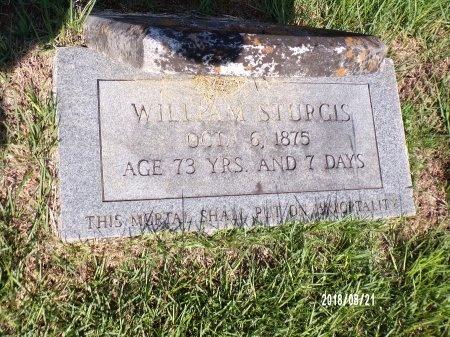 STURGIS, WILLIAM - Bradley County, Arkansas | WILLIAM STURGIS - Arkansas Gravestone Photos