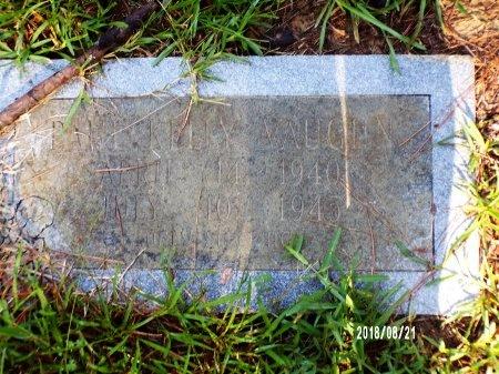 VAUGHN, PAUL KELLY - Bradley County, Arkansas | PAUL KELLY VAUGHN - Arkansas Gravestone Photos