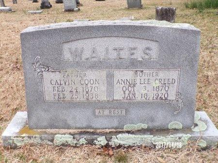 WAITES, ANNIE LEE - Bradley County, Arkansas | ANNIE LEE WAITES - Arkansas Gravestone Photos