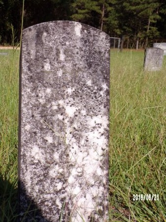 WHERRY, IRIS - Bradley County, Arkansas | IRIS WHERRY - Arkansas Gravestone Photos