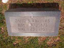 WILLIAM, DAVID S - Bradley County, Arkansas | DAVID S WILLIAM - Arkansas Gravestone Photos