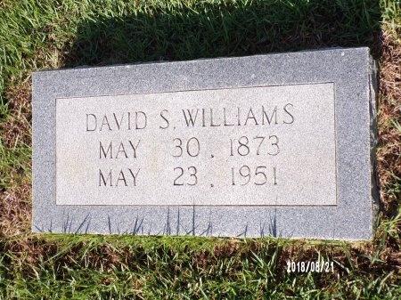 WILLIAMS, DAVID S - Bradley County, Arkansas   DAVID S WILLIAMS - Arkansas Gravestone Photos