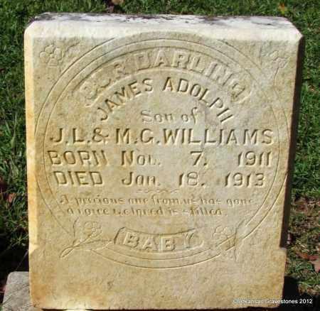 WILLIAMS, JAMES ADOLPH - Bradley County, Arkansas | JAMES ADOLPH WILLIAMS - Arkansas Gravestone Photos