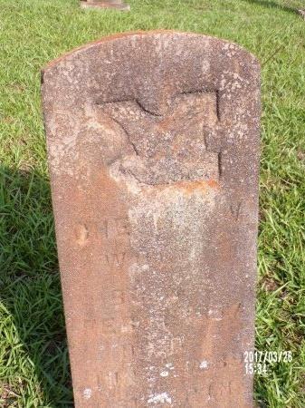 WOLFE, CHESLEY V - Bradley County, Arkansas   CHESLEY V WOLFE - Arkansas Gravestone Photos