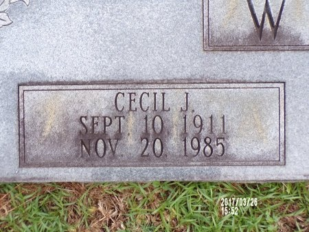 WOLFE, CECIL J (CLOSE UP) - Bradley County, Arkansas | CECIL J (CLOSE UP) WOLFE - Arkansas Gravestone Photos