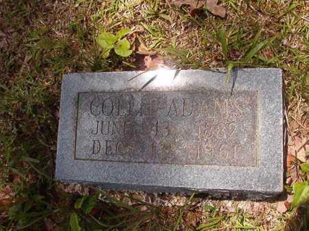 ADAMS, COLLIE - Calhoun County, Arkansas | COLLIE ADAMS - Arkansas Gravestone Photos
