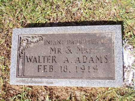 ADAMS, INFANT DAUGHTER - Calhoun County, Arkansas | INFANT DAUGHTER ADAMS - Arkansas Gravestone Photos