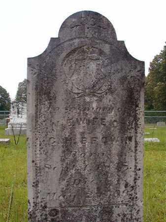 BROWN, N E - Calhoun County, Arkansas | N E BROWN - Arkansas Gravestone Photos