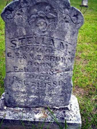 BROWN, STELLA M - Calhoun County, Arkansas | STELLA M BROWN - Arkansas Gravestone Photos