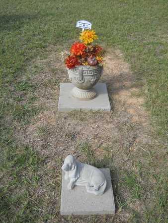 CLEMONS, HUEY P - Calhoun County, Arkansas   HUEY P CLEMONS - Arkansas Gravestone Photos