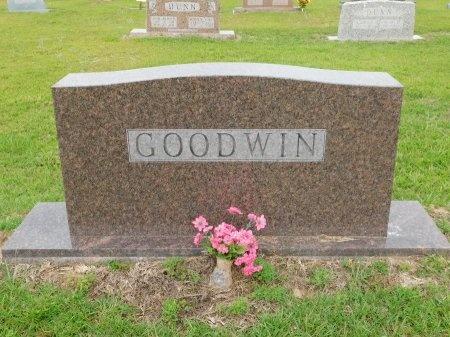 GOODWIN, MEMORIAL - Calhoun County, Arkansas | MEMORIAL GOODWIN - Arkansas Gravestone Photos