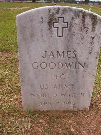 GOODWIN (VETERAN WWII), JAMES - Calhoun County, Arkansas | JAMES GOODWIN (VETERAN WWII) - Arkansas Gravestone Photos