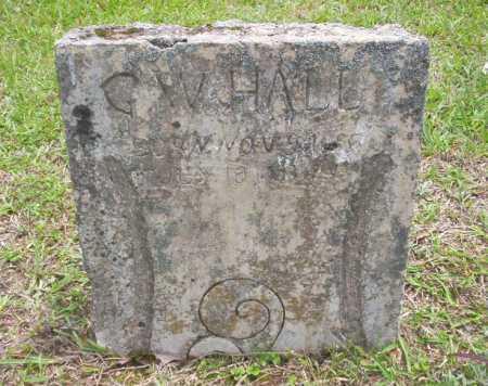 HALL, G W - Calhoun County, Arkansas | G W HALL - Arkansas Gravestone Photos