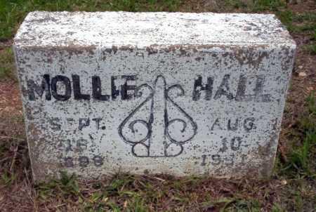 HALL, MOLLIE - Calhoun County, Arkansas | MOLLIE HALL - Arkansas Gravestone Photos