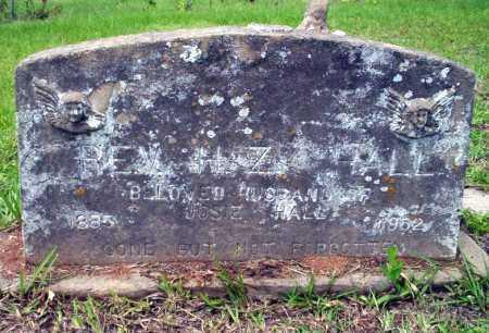 HALL, H Z, REV - Calhoun County, Arkansas | H Z, REV HALL - Arkansas Gravestone Photos