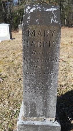 HARRIS, MARY - Calhoun County, Arkansas | MARY HARRIS - Arkansas Gravestone Photos