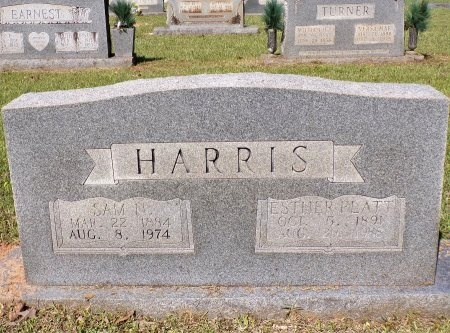 HARRIS, SAMUEL NEWTON - Calhoun County, Arkansas | SAMUEL NEWTON HARRIS - Arkansas Gravestone Photos