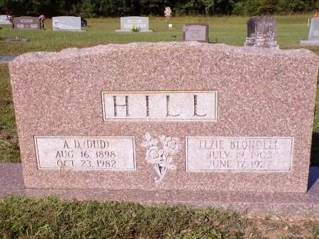 HILL, ELZIE - Calhoun County, Arkansas | ELZIE HILL - Arkansas Gravestone Photos