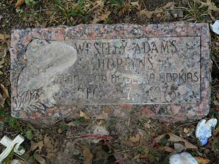 HOPKINS, WESTLEY ADAMS - Calhoun County, Arkansas | WESTLEY ADAMS HOPKINS - Arkansas Gravestone Photos
