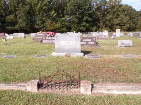 JONES, FAMILY PLOT - Calhoun County, Arkansas | FAMILY PLOT JONES - Arkansas Gravestone Photos