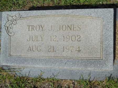 JONES, TROY J - Calhoun County, Arkansas   TROY J JONES - Arkansas Gravestone Photos