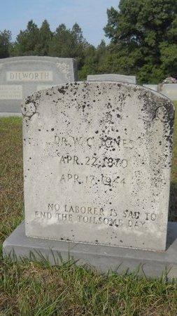 JONES, WILLIS C., DR - Calhoun County, Arkansas | WILLIS C., DR JONES - Arkansas Gravestone Photos