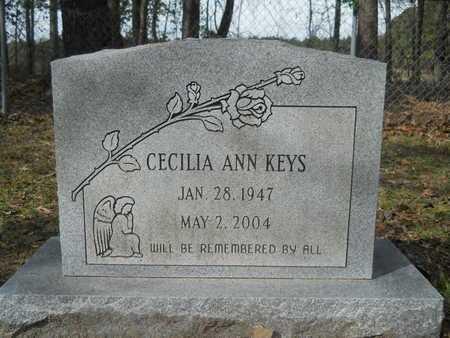 KEYS, CECILIA ANN - Calhoun County, Arkansas | CECILIA ANN KEYS - Arkansas Gravestone Photos