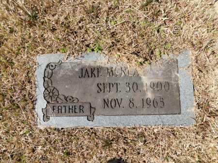 MCNEAL, JAKE - Calhoun County, Arkansas   JAKE MCNEAL - Arkansas Gravestone Photos