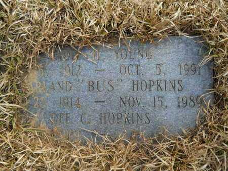 YOUNG, SADIE - Calhoun County, Arkansas   SADIE YOUNG - Arkansas Gravestone Photos