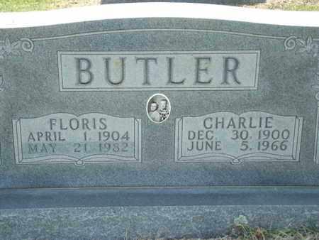 BUTLER, FLORIS - Carroll County, Arkansas | FLORIS BUTLER - Arkansas Gravestone Photos