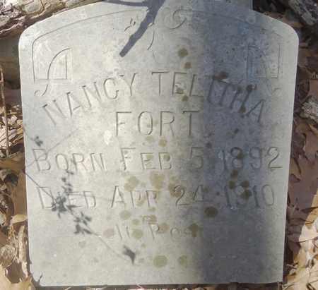FORT, NANCY TELITHA - Carroll County, Arkansas   NANCY TELITHA FORT - Arkansas Gravestone Photos