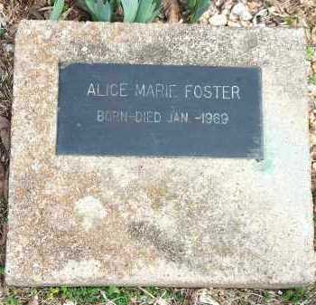 FOSTER, ALICE MARIE - Carroll County, Arkansas | ALICE MARIE FOSTER - Arkansas Gravestone Photos