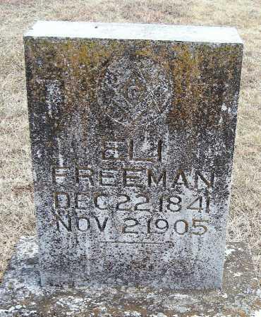 FREEMAN, ELI - Carroll County, Arkansas | ELI FREEMAN - Arkansas Gravestone Photos