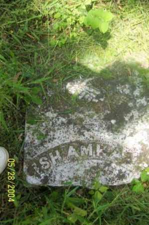 HALE, ISHAMHA - Carroll County, Arkansas | ISHAMHA HALE - Arkansas Gravestone Photos