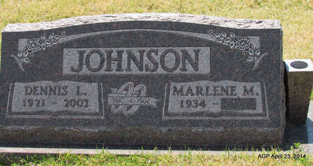JOHNSON, DENNIS L - Carroll County, Arkansas | DENNIS L JOHNSON - Arkansas Gravestone Photos
