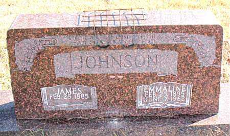 JOHNSON, EMMALINE - Carroll County, Arkansas | EMMALINE JOHNSON - Arkansas Gravestone Photos