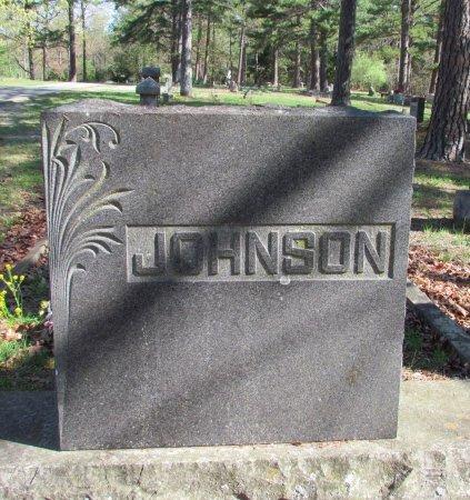 JOHNSON, FAMILY STONE - Carroll County, Arkansas   FAMILY STONE JOHNSON - Arkansas Gravestone Photos