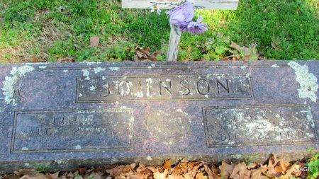 JOHNSON, IRENE - Carroll County, Arkansas | IRENE JOHNSON - Arkansas Gravestone Photos