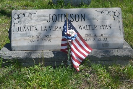 JOHNSON, WALTER EVAN - Carroll County, Arkansas | WALTER EVAN JOHNSON - Arkansas Gravestone Photos