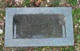 LITTRELL, ELSIE FAY - Carroll County, Arkansas   ELSIE FAY LITTRELL - Arkansas Gravestone Photos