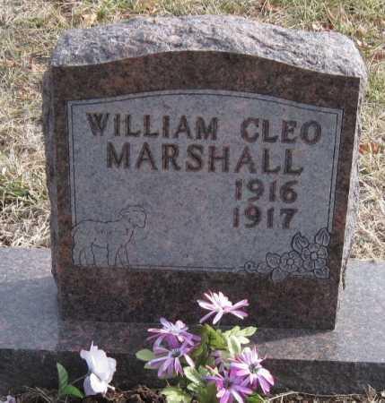 MARSHALL, WILLIAM CLEO - Carroll County, Arkansas   WILLIAM CLEO MARSHALL - Arkansas Gravestone Photos