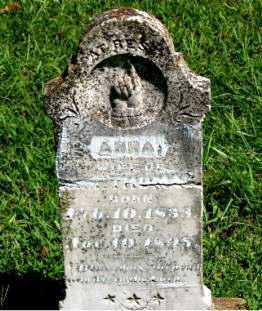 THOMAS, ANNA - Carroll County, Arkansas   ANNA THOMAS - Arkansas Gravestone Photos