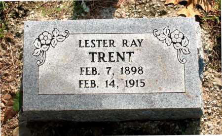 TRENT, LESTER RAY - Carroll County, Arkansas | LESTER RAY TRENT - Arkansas Gravestone Photos