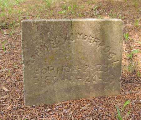 VANDERPOOL, FLORENCE - Carroll County, Arkansas | FLORENCE VANDERPOOL - Arkansas Gravestone Photos