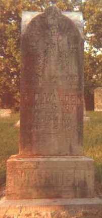 WALDEN, D D - Carroll County, Arkansas | D D WALDEN - Arkansas Gravestone Photos