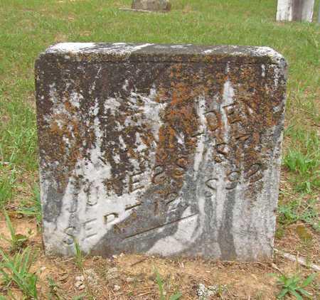 WALDEN, W H - Carroll County, Arkansas | W H WALDEN - Arkansas Gravestone Photos