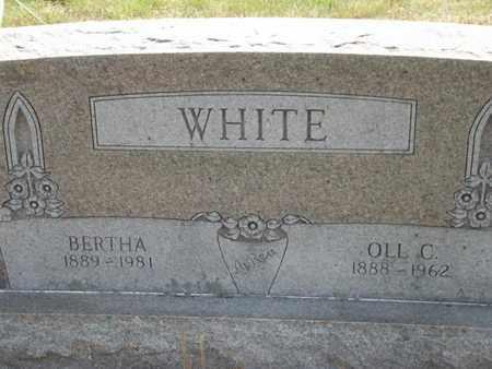 WHITE, OLL C - Carroll County, Arkansas | OLL C WHITE - Arkansas Gravestone Photos