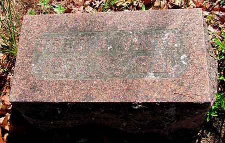 WHITE, FRED - Carroll County, Arkansas | FRED WHITE - Arkansas Gravestone Photos