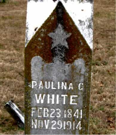 WHITE, PAULINE C. - Carroll County, Arkansas | PAULINE C. WHITE - Arkansas Gravestone Photos